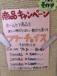 夏の商品キャンペーン